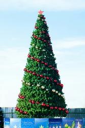 Большие елки купить дешево в Курске. Доставка.Монтаж.Оформление