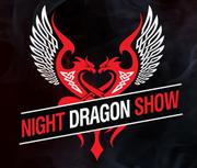 """Танцевальный коллектив с огнем """"Night Dragon Show"""""""