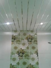 Ремонт ванных комнат, санузлов прихожих